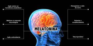 Pharma Care - Produtos Cápsulas - Melatonina (Cápsulas para Melhora do sono)