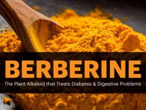 Pharma Care - Produtos Saúde - Berberina